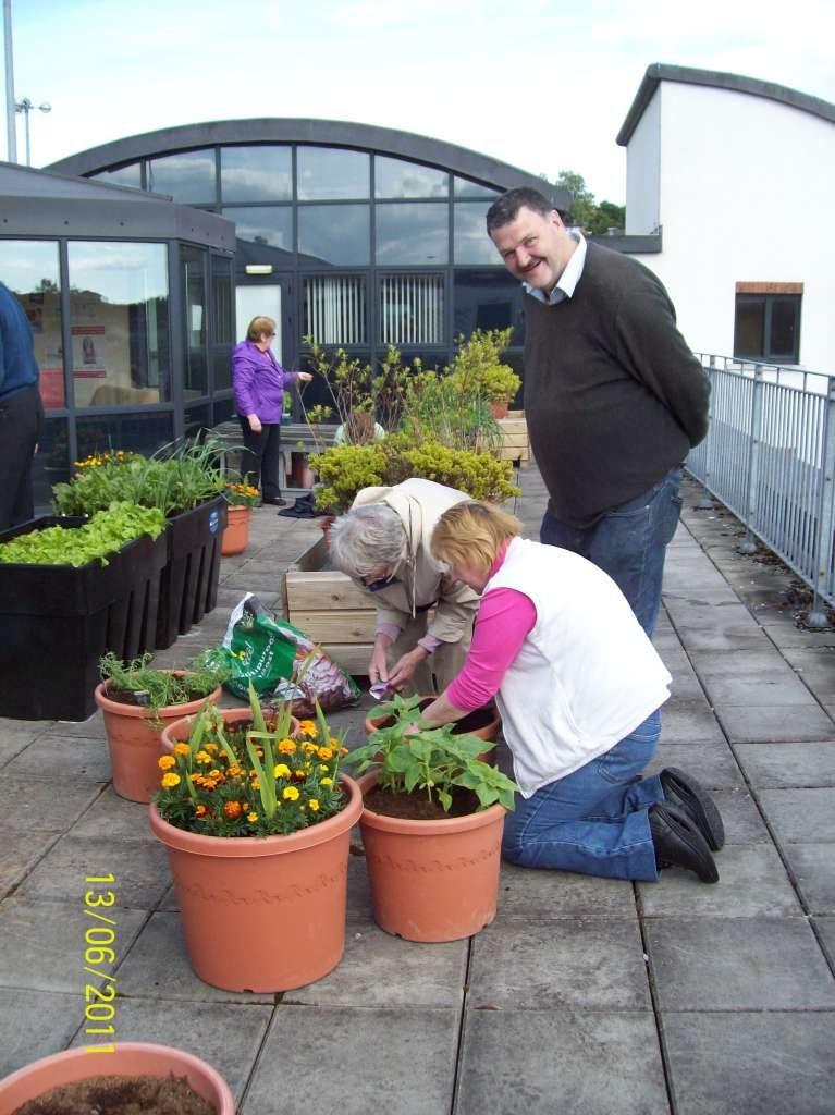 Blackpool garden-project-002